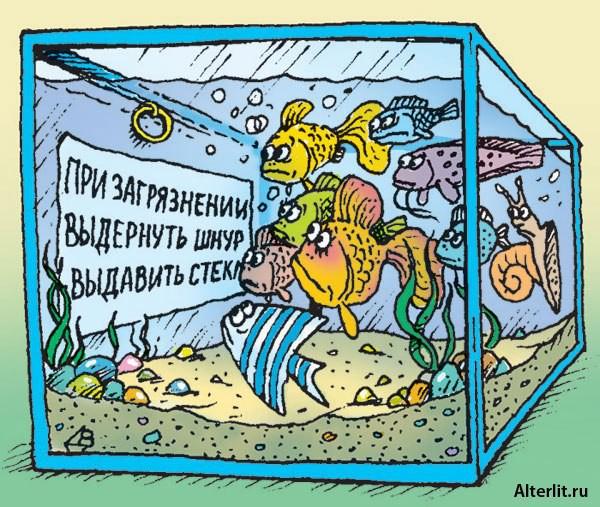 Смешные картинки про аквариум, ватсап